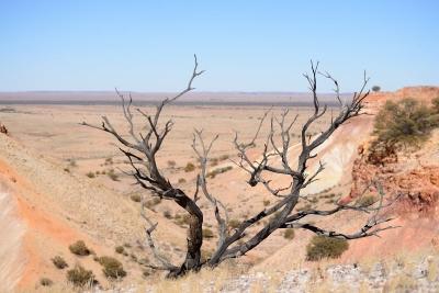 Painted Desert (1)
