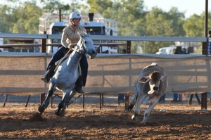 Women compete against men in the campdraft