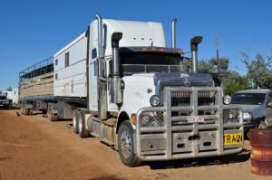 Big truck .... little dog