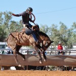 Saxby roundup and rodeo