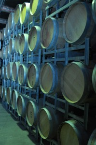 Wine barrels - a major reason to visit Adelalide