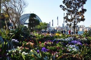 Parks at Circular Quay
