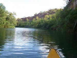 Canoing Boodjamulla-gorge