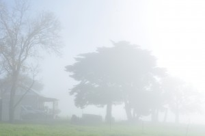 The house through the fog