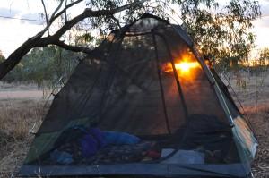Sunrise through the tent