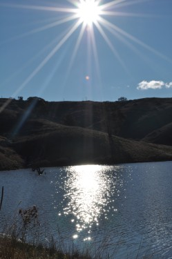 sun-reflections