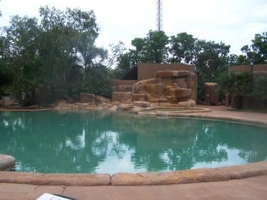The pool at Cooinda