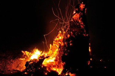 Burning logApril 2015 (11)