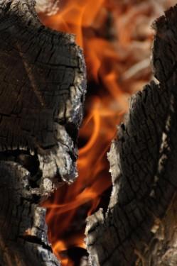 Burning logApril 2015 (4)