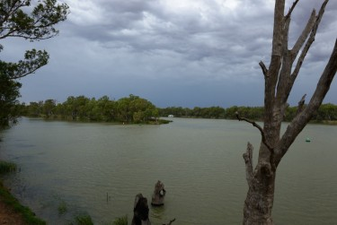 Where the Murray meets the Darling