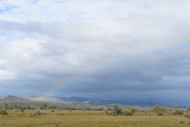Rainbow over the Flinders
