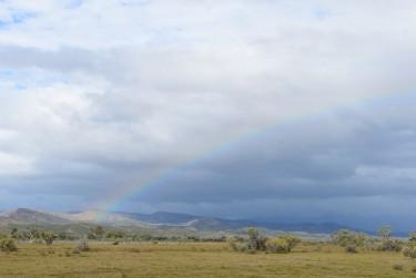 Rainbow over the Flinders