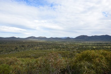 The view into Wilpena Pound. A good place for 120,000 sheep?