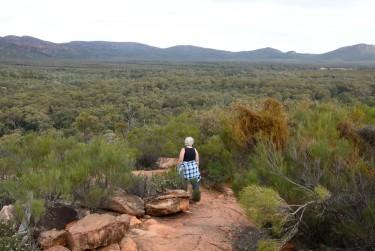 Wilpena Flinders_07