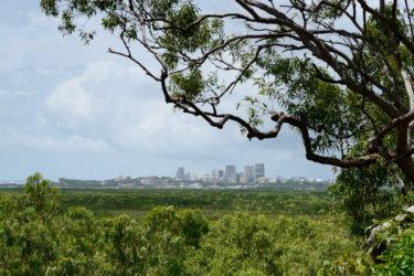 CDNP Darwinacross mangroves