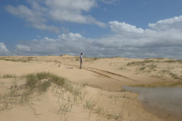 Tracks behind dunes
