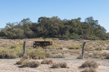 Dalhousie Springs farming ruins