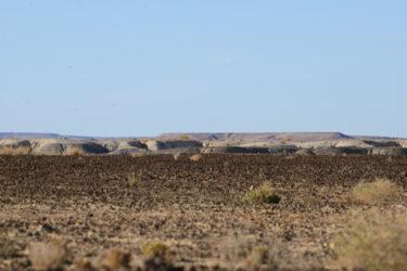 Dalhousie alien landscape_05