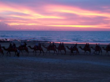 Sunset camel ride on Cable Beach, Broome