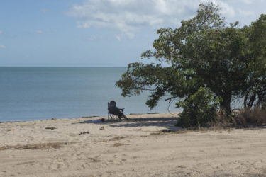 Relaxing in the shade of a tree on the beach